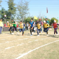 ANNUAL SPORTS DAY (SENIORS) 11/02/17